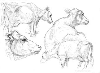 RWF Cow Studies 2004, ballpoint ink.