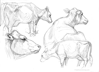 RWF Cow Studies 2004, ballpoint ink.
