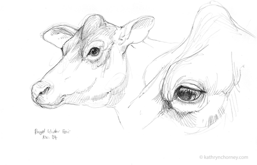 RWF Cow Head Studies 2004, ballpoint ink.