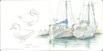 Boats & Ducks, Harbourfront, Toronto