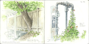 Two sketches of nature intersecting with the built environment, in the Toronto area.